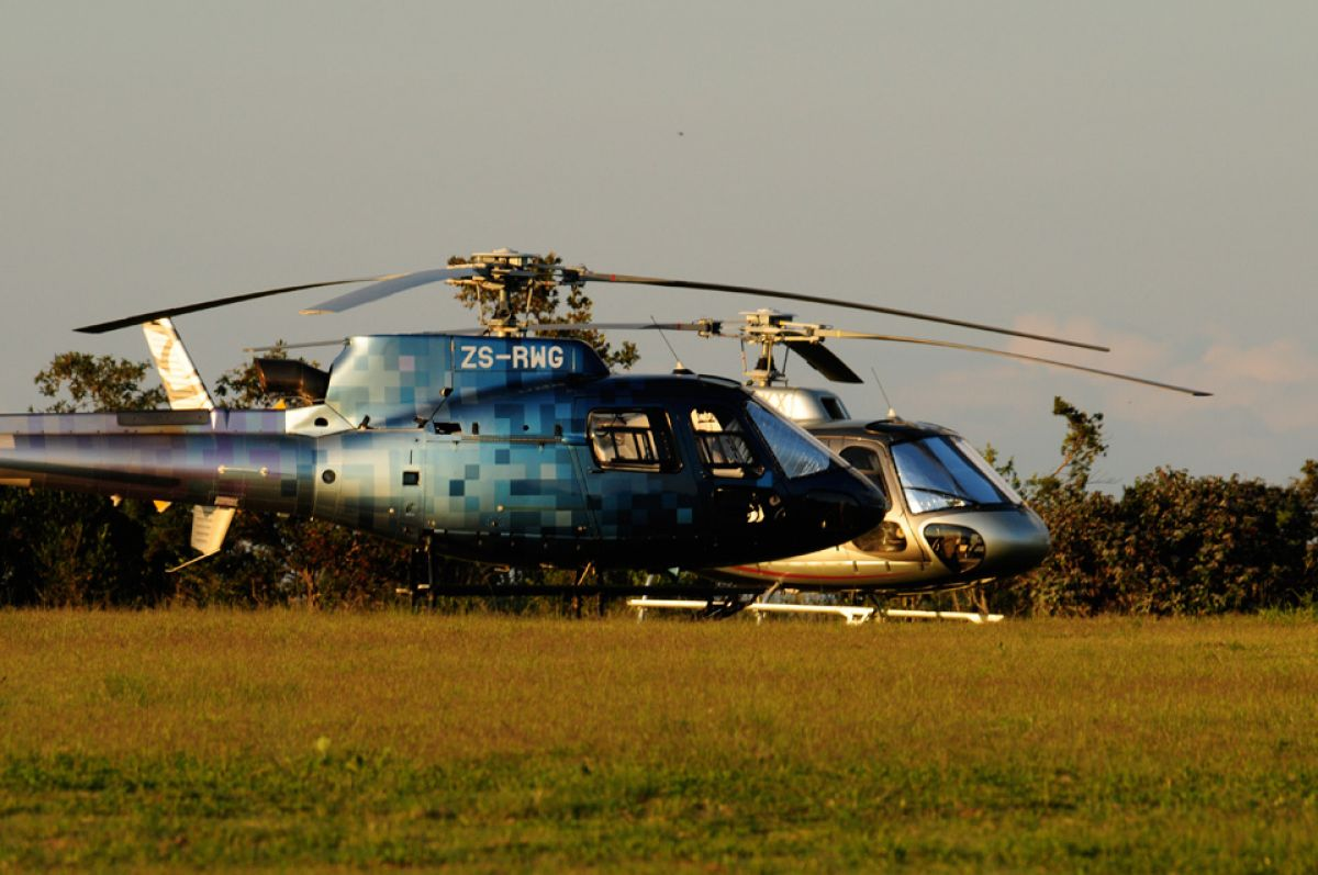 helicopter safari africa luxury experience
