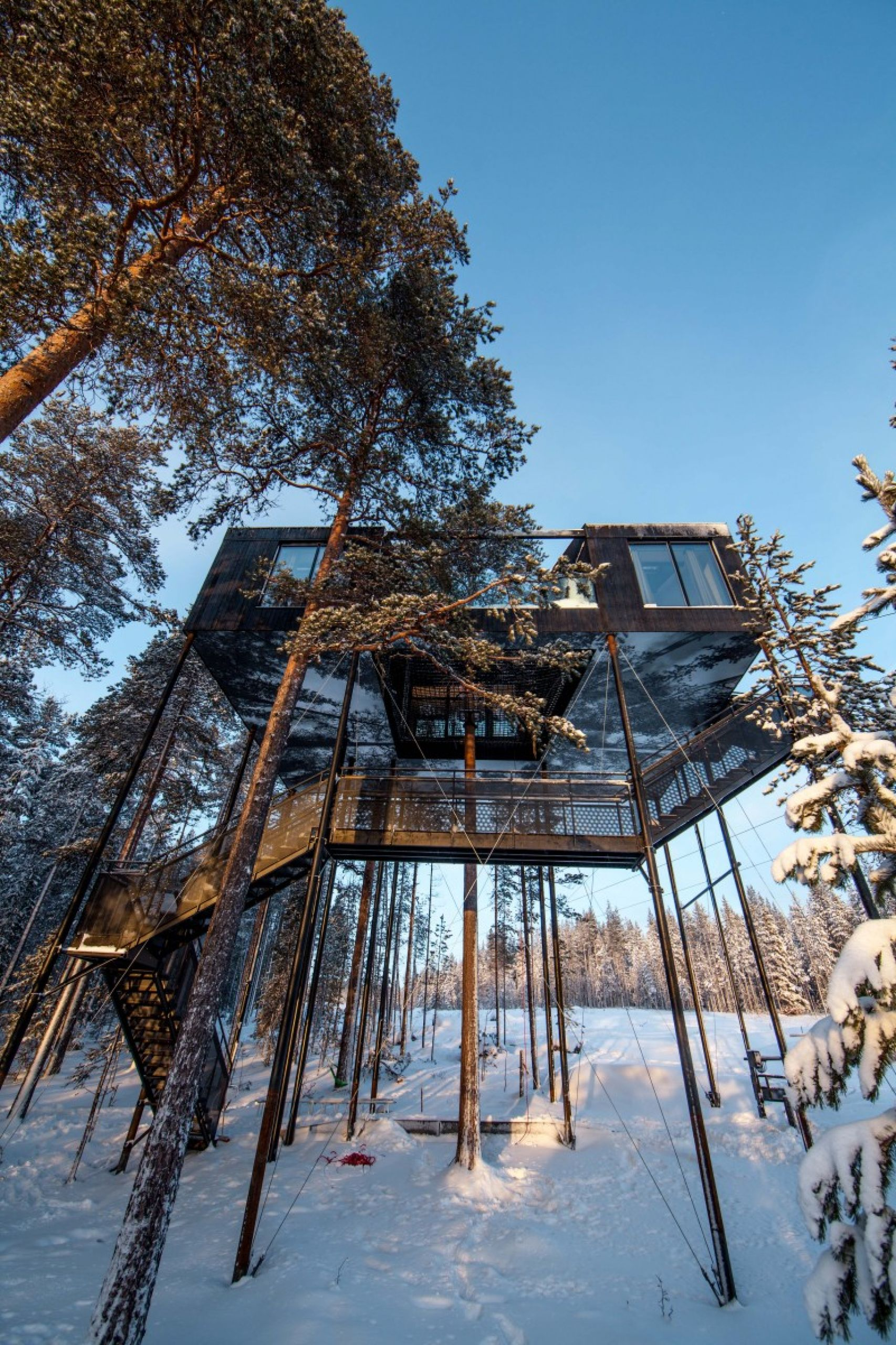 treehotel hotel sweden experience
