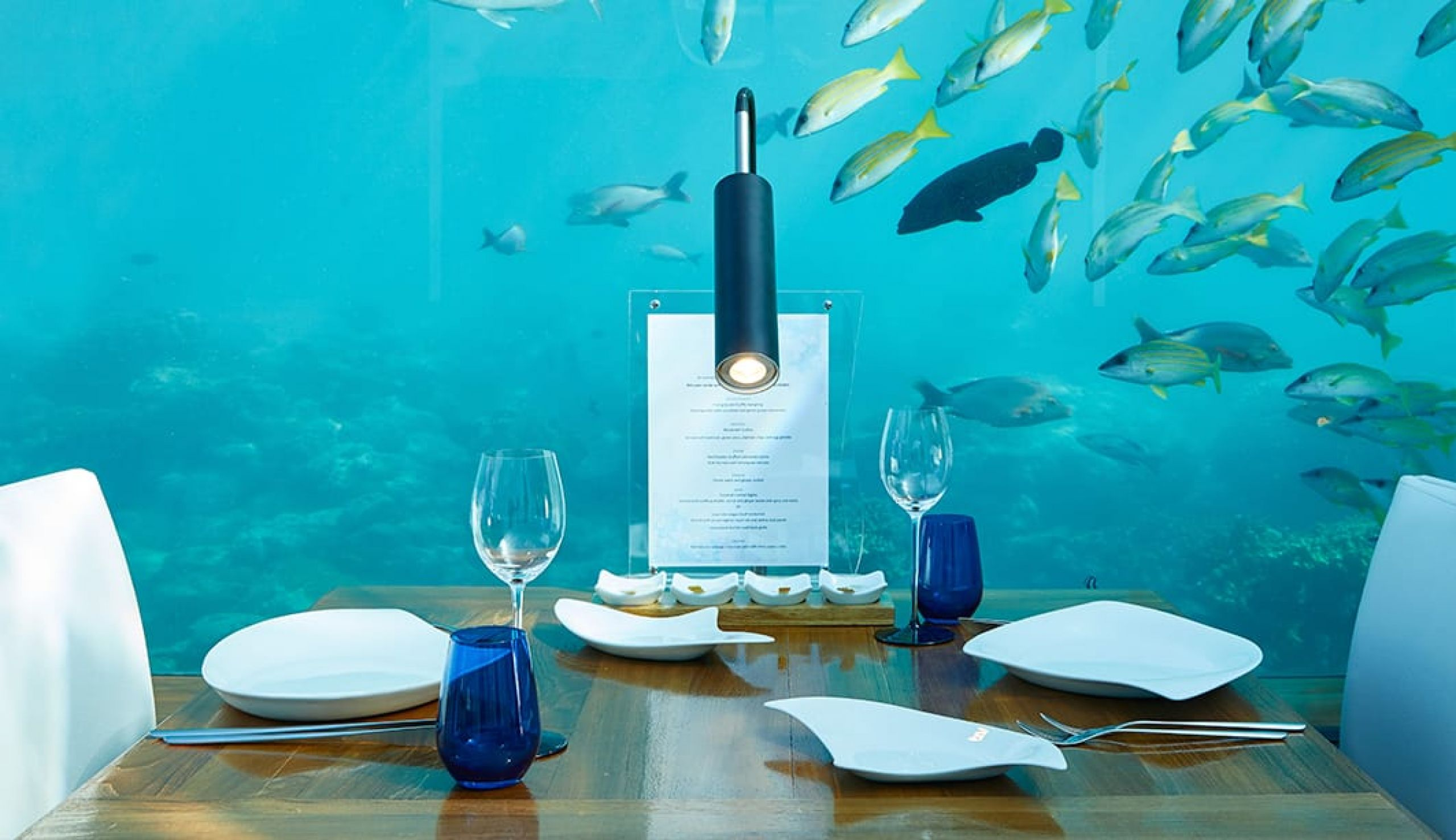 undersea restaurant maldives conrad luxury hotel
